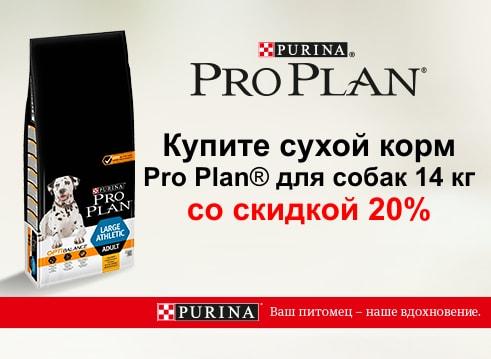 Про План скидка 20%