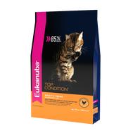 Эукануба для взрослых кошек