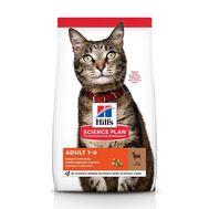 Хиллс сухой корм для кошек с ягненком, 10кг