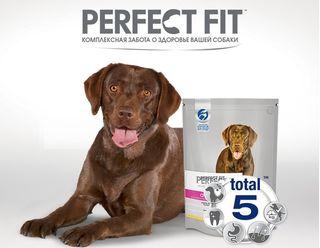 Перфект Фит для собак